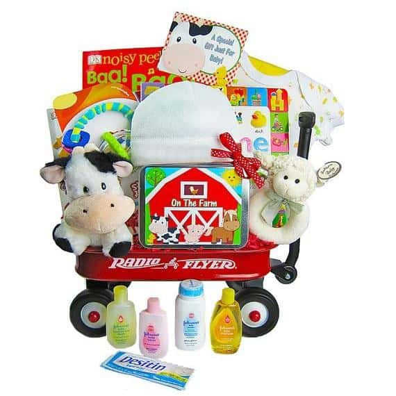 Day On The Farm Baby Gift