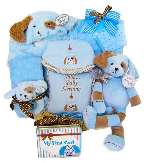 Puppy Love Baby Boy Gift Basket