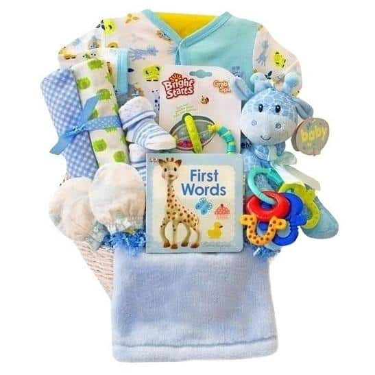 Little Safari Baby Boy Gift Basket