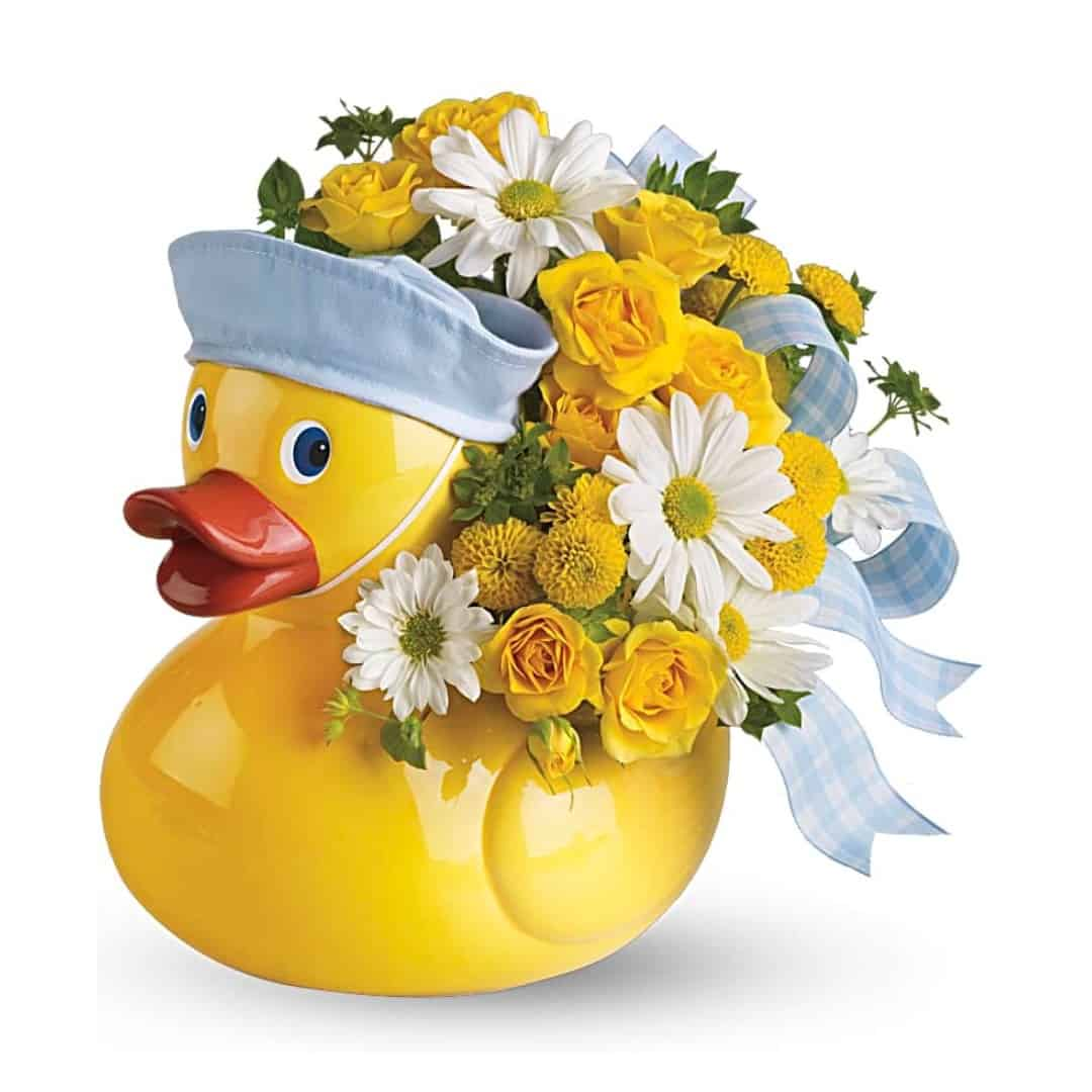 Ducky Delight - Boy