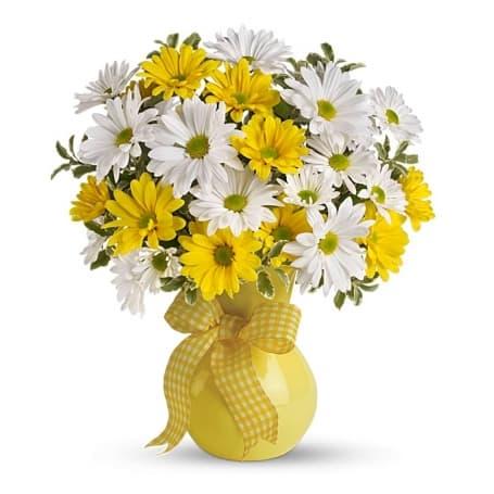 Yellow & White Daisy Arrangement - Flower Gifts