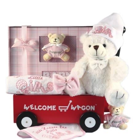 Welcome Wagon Newborn Baby Girl Gift