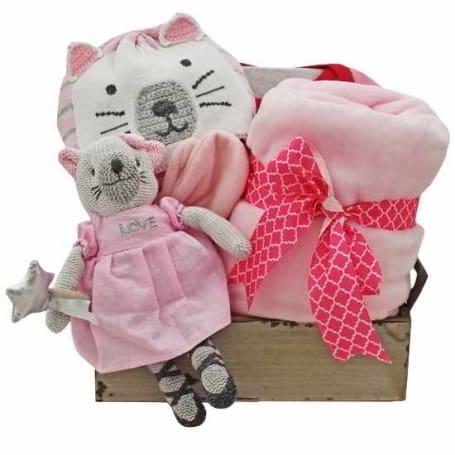 Pink Kitty Gift Basket