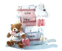 Twins Keepsake Rocking Horse and Layette Gift